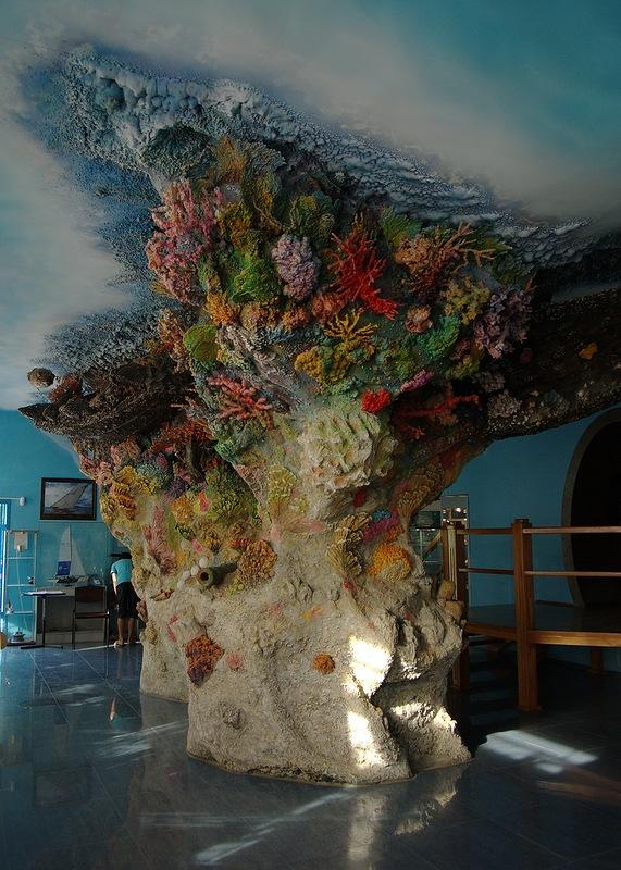 Сафари парк Геленджик морской музей